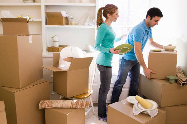 How to Choose the Mover & Packers for your Move?
