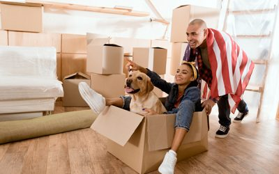 Essential Tips For Moving With Pets